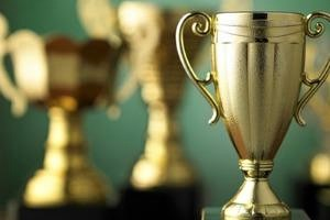 AWARDS PROGRAM MANAGEMENT